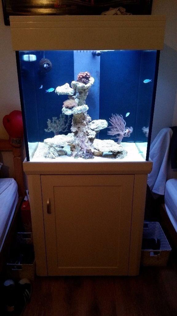 Aqua one cube 195l marine tank and aquascape rock for sale ...