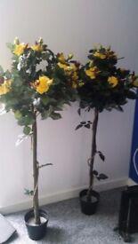Artifical yellow rose bush tree x2 -ponteland area