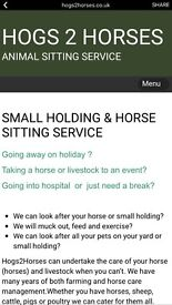 Hog to horse small holding and domestic animal sitting