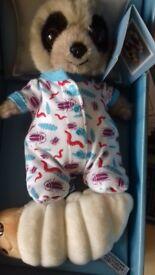 Oleg baby meerkat