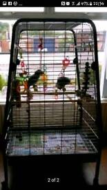 Large Parrot Cage (Reduced)