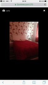 Double room for rent looking for couple or single must be clean n tidy person located in Gillingham