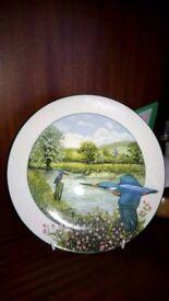 Stunning Royal doulton decorative plate