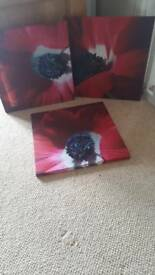 X3 canvas prints
