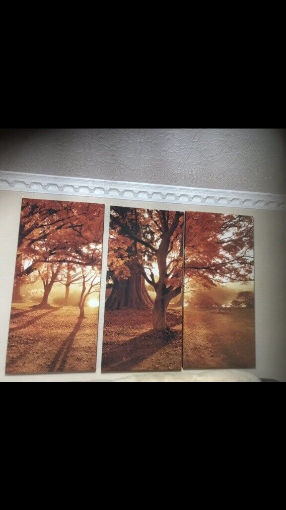 3 part canvas in bessbrook county down gumtree