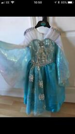 Elsa Fancy Dress ( Luxury Disney )