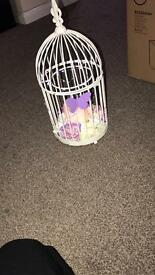 Wedding cages