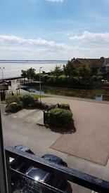 Victoria dock flat for rent or sale