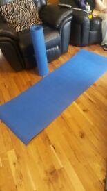 2 x blue gym mats