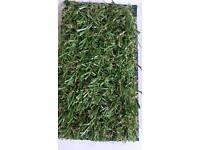 Artificial grass 20mil