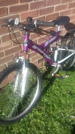 mountain bike.youth or small adult.purple.suspension