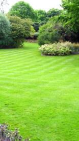 Property Maintenance, Landscaping, Lawn mowing, Hedge Cutting Patios and Decking