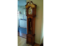 TEMPUS FUGIT LONG CASE GRANDFATHER CLOCK