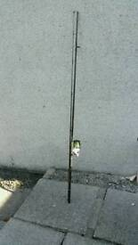 Pike or carp rod and reel