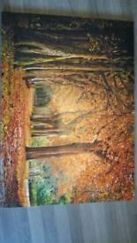 70cmx50cm Painting