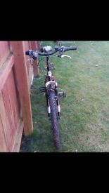 Boys Red and Black Mountain Bike