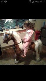 Life size pony