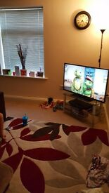 Double bedroom in flat share