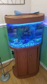 70 Litre Fish Tank Made By FishRFun FOR SALE BARGAIN
