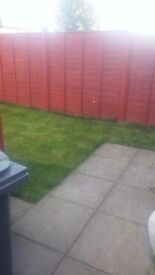 Daniel & Son Gardening Services, Garden Maintenance at competitive quote