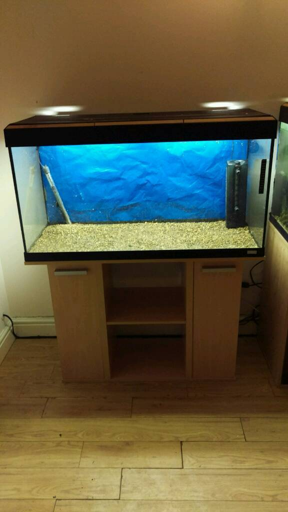 Fluval Roma 200L Tropical Fish Tank Full Setup on Standin Morpeth, NorthumberlandGumtree - Fluval Roma 200L Tank & Stand Comes with all of the below Fluval Roma 200L Tank Fitted Stand Original Working Light Unit Fluval U4 Filter Tropical Heater Gravel