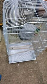 Large bird cage in great condition
