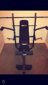 weight bench, for arms legs and pecs. and becnh for situp support