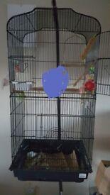 medium size bird cage