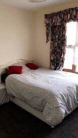 2 Large Doubles and 1 Large Single Room Available To Rent Now In Gants Hill/ Redbridge!