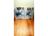 2 piece canvas pictures brand new in wrapping