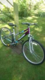 Raleigh Mantis Mountain bike.