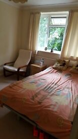 Double room in Worcester Park