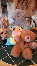 cuddley toys