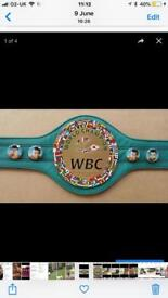 World title boxing belts all types and organisations