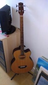 Electric Bass + Amp also Acoustic Bass guitar