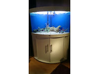 190 LITER JUWEL CORNER FISH TANK FOR SALE,,FULL SET UP