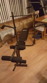 Pro Fitness Multi-Use Woek Out Bench