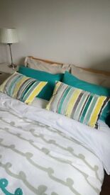 Cushions and Throw Teal colour