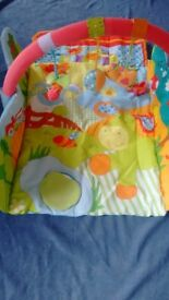 Apple Farm Playgym, baby colorful playmat