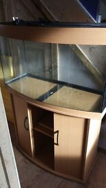 Juwel 180 litre curve tank with beech wood stand