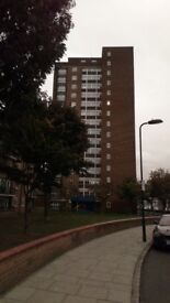 Fantastic 1 bedroomed flat, Hackney E9. Ex Local Authority, 11th Floor. Great views and location.