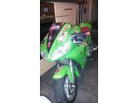50cc Ninja Midi Moto (XMAS) BARGAIN!!