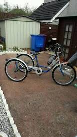 3 wheeler bike