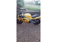 Triumph daytona t595 955cc mot till july 2018 great condition for age