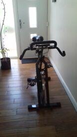 Carl Lewis Spinning Cycle