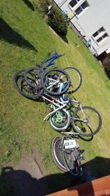 Looking for broken/unused bicycles