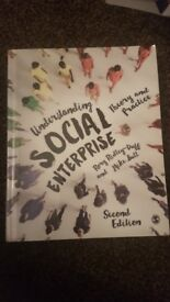 UNDERSTANDING SOCIAL ENTERPRISE THEORY AND PRACTICE