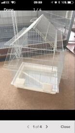 Bird cage birdcage