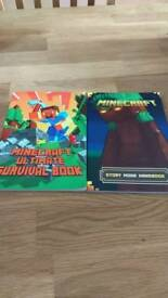 Minecraft books x 2
