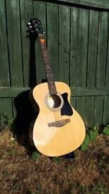 Acoustic guitar Ibanez